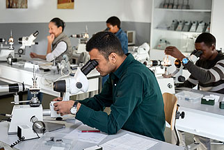 Study Gemmology at German Gemmological Association (DGemG)
